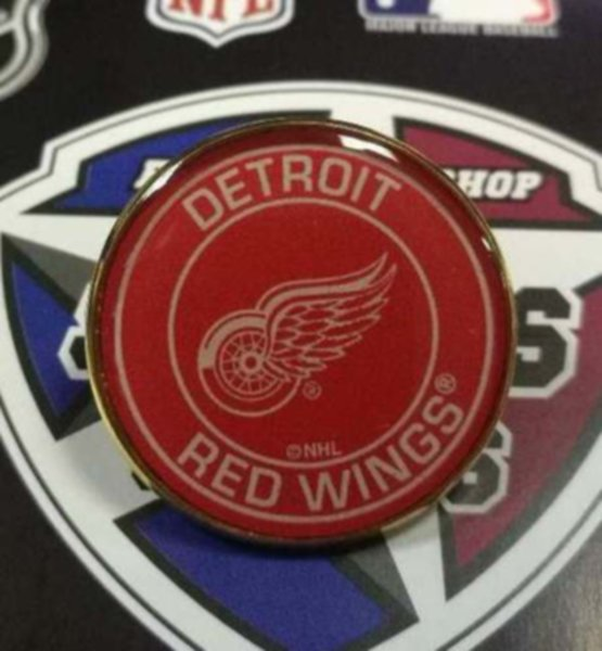 значок Detroit Red Wings(№0764)(2,5см)