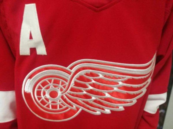 свитер Detroit Red Wings №13 DATSYUK(adidas)