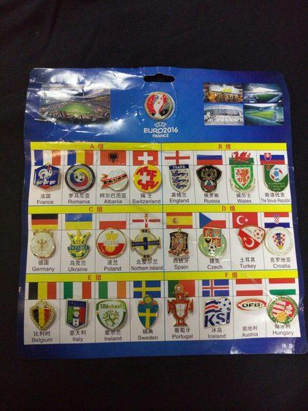 набор значков EURO 2016
